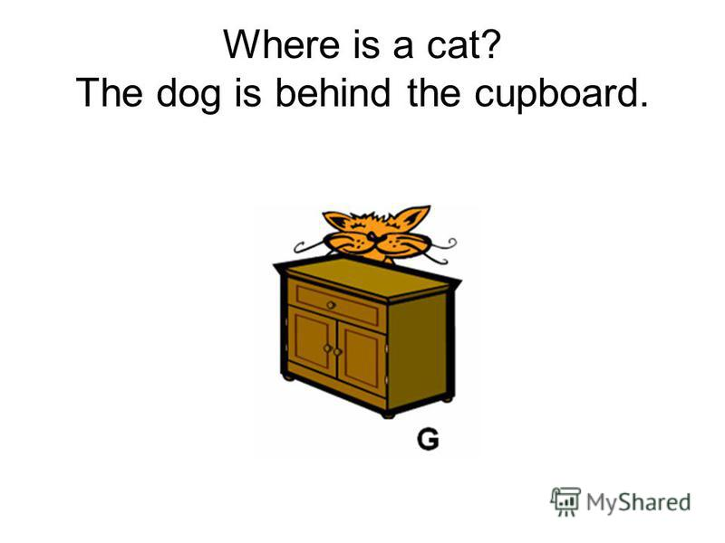 Where is a cat? The dog is behind the cupboard.