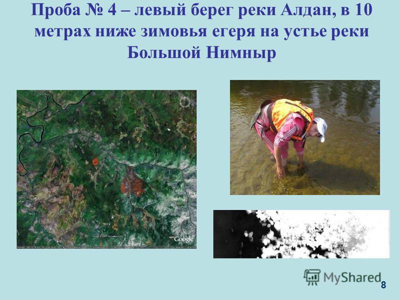 Проба 4 – левый берег реки Алдан, в 10 метрах ниже зимовья егеря на устье реки Большой Нимныр 8
