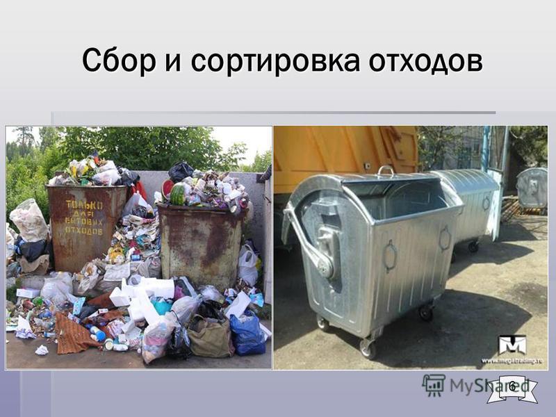 Сбор и сортировка отходов 6