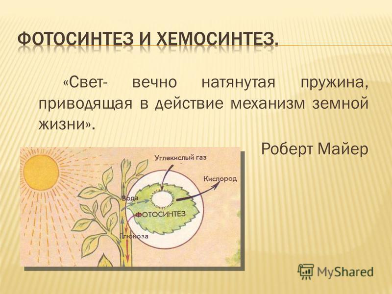 «Свет- вечно натянутая пружина, приводящая в действие механизм земной жизни». Роберт Майер