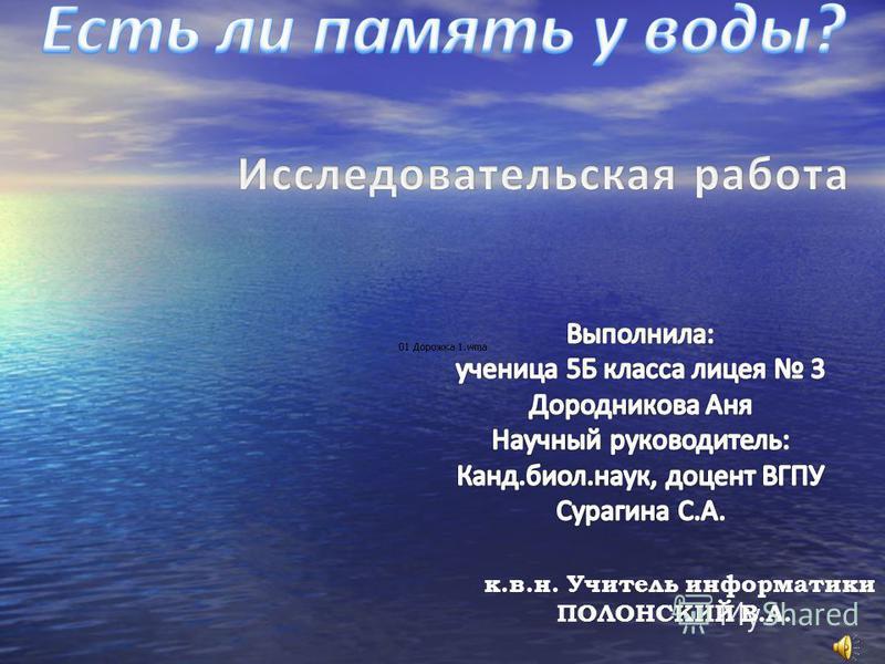 1 к.в.н. Учитель информатики ПОЛОНСКИЙ В.А.