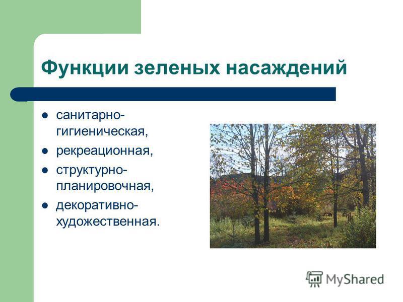 Функции зеленых насаждений санитарно- гигиеническая, рекреационная, структурно- планировочная, декоративно- художественная.