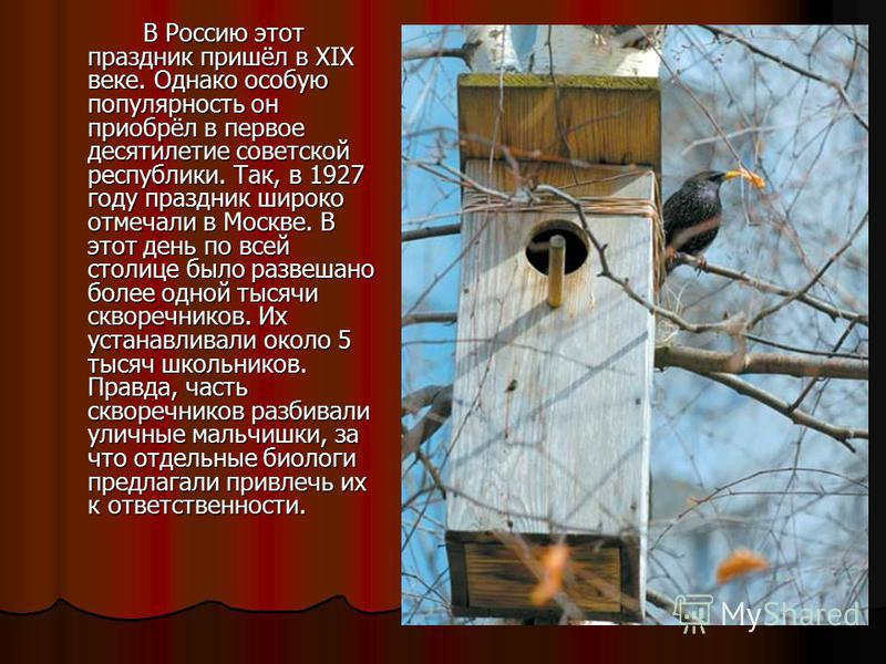 В Россию этот праздник пришёл в XIX веке. Однако особую популярность он приобрёл в первое десятилетие советской республики. Так, в 1927 году праздник широко отмечали в Москве. В этот день по всей столице было развешано более одной тысячи скворечников
