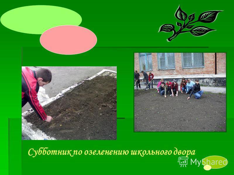 Субботник по озеленению школьного двора
