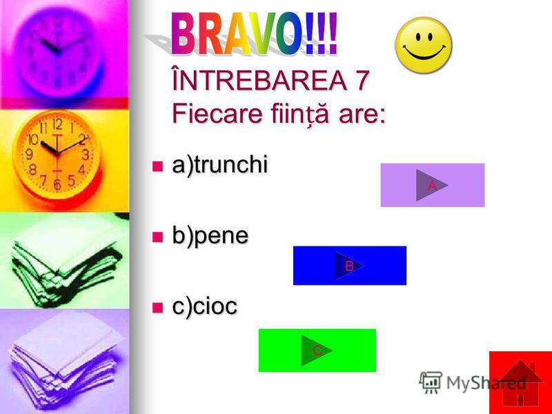 ÎNTREBAREA 7 Fiecare fiină are: a)trunchi a)trunchi b)pene b)pene c)cioc c)cioc A C B
