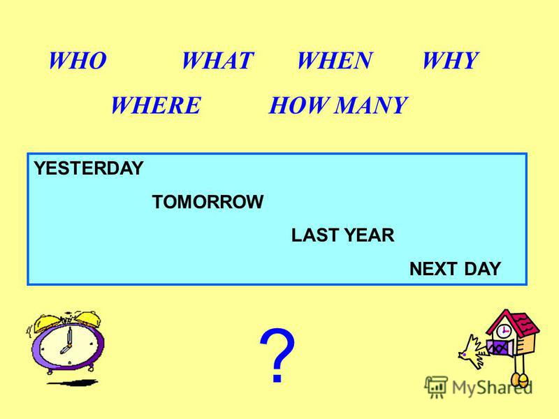 YESTERDAY TOMORROW LAST YEAR NEXT DAY WHO WHAT WHEN WHY WHERE HOW MANY ?