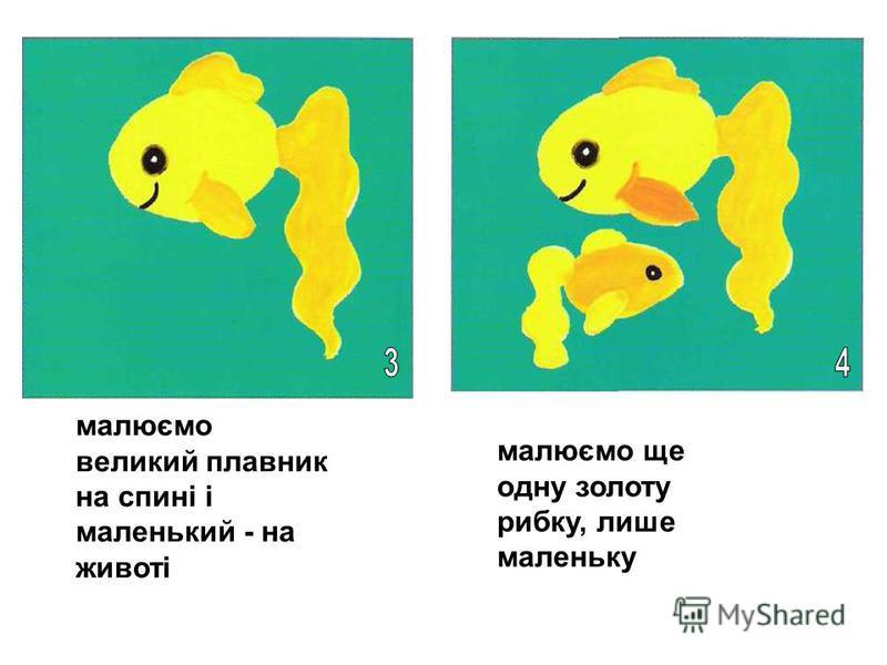 малюємо великий плавник на спині і маленький - на животі малюємо ще одну золоту рибку, лише маленьку