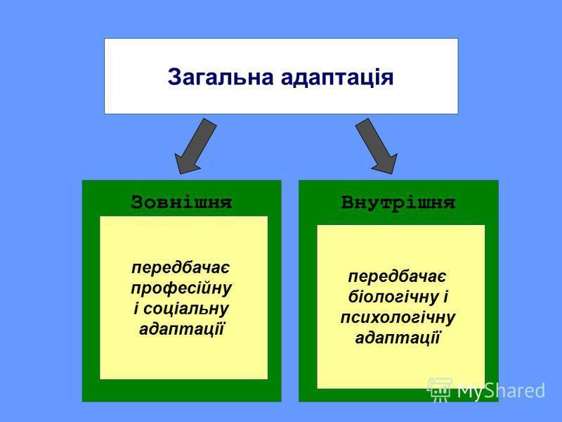 Загальна адаптація ЗовнішняВнутрішня передбачає професійну і соціальну адаптації передбачає біологічну і психологічну адаптації
