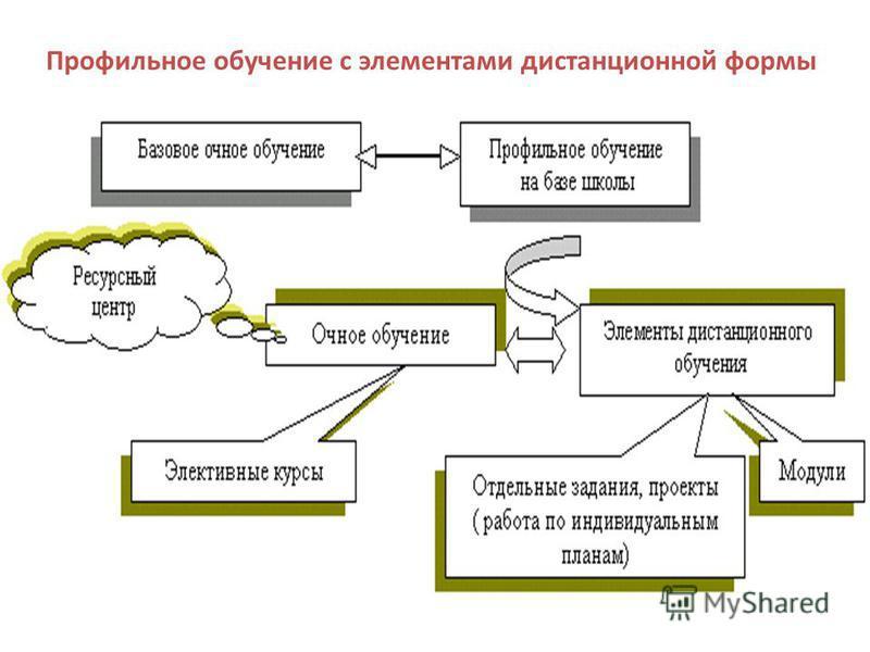 Профильное обучение с элементами дистанционной формы