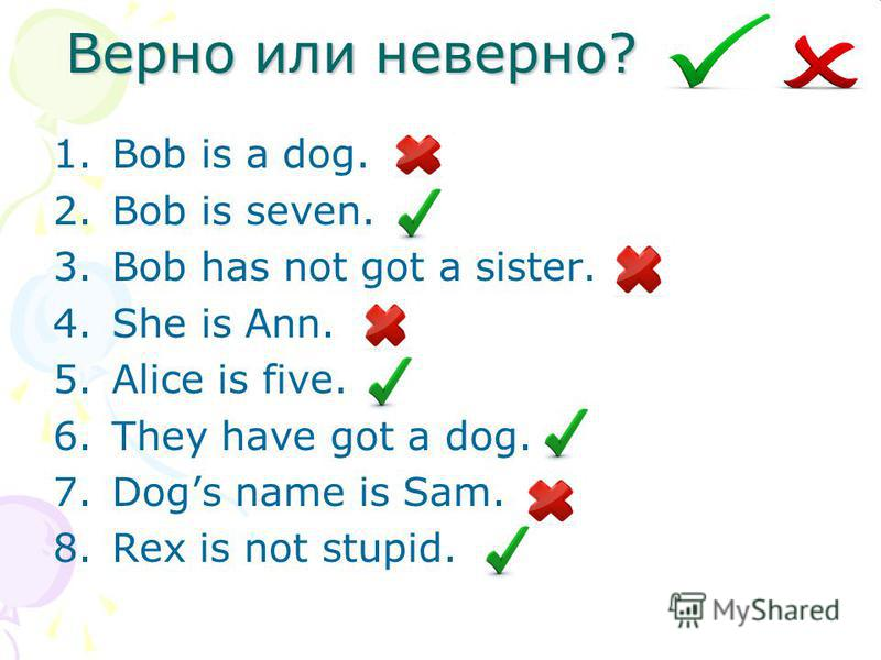 Верно или неверно? 1. Bob is a dog. 2. Bob is seven. 3. Bob has not got a sister. 4. She is Ann. 5. Alice is five. 6. They have got a dog. 7. Dogs name is Sam. 8. Rex is not stupid.