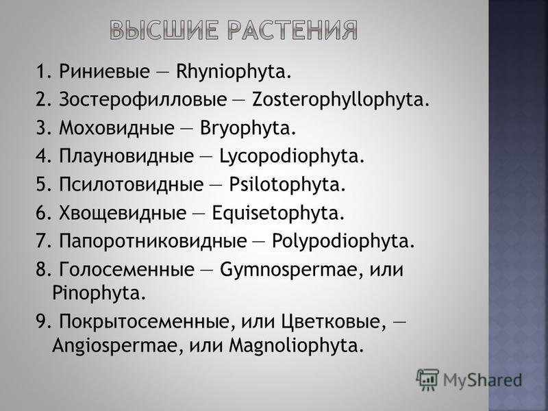 1. Риниевые Rhyniophyta. 2. Зостерофилловые Zosterophyllophyta. 3. Моховидные Bryophyta. 4. Плауновидные Lycopodiophyta. 5. Псилотовидные Psilotophyta. 6. Хвощевидные Equisetophyta. 7. Папоротниковидные Polypodiophyta. 8. Голосеменные Gymnospermae, и