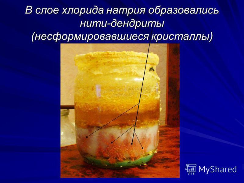 В слое хлорида натрия образовались нити-дендриты (несформировавшиеся кристаллы)