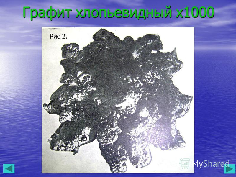 Графит хлопьевидный х 1000 Рис 2.