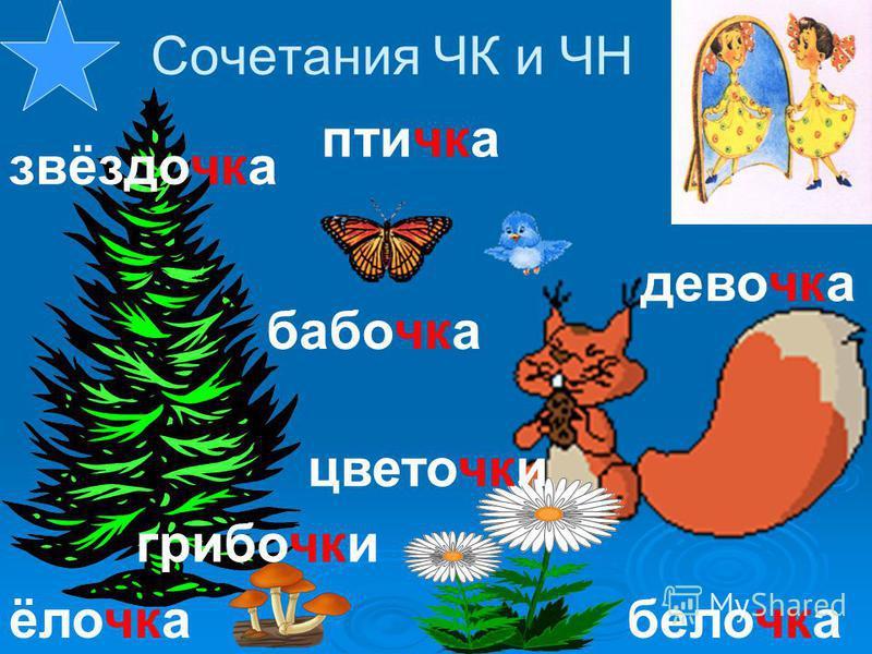ёлочка звёздочка бабочка цветочки белочка девочка птичка грибочки Сочетания ЧК и ЧН