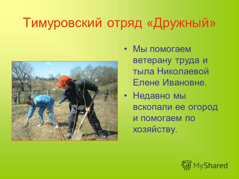 Тимуровский отряд «Дружный» Мы помогаем ветерану труда и тыла Николаевой Елене Ивановне. Недавно мы вскопали ее огород и помогаем по хозяйству.