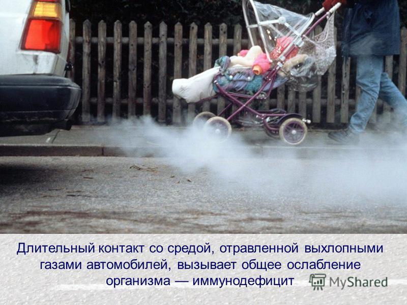 Длительный контакт со средой, отравленной выхлопными газами автомобилей, вызывает общее ослабление организма иммунодефицит