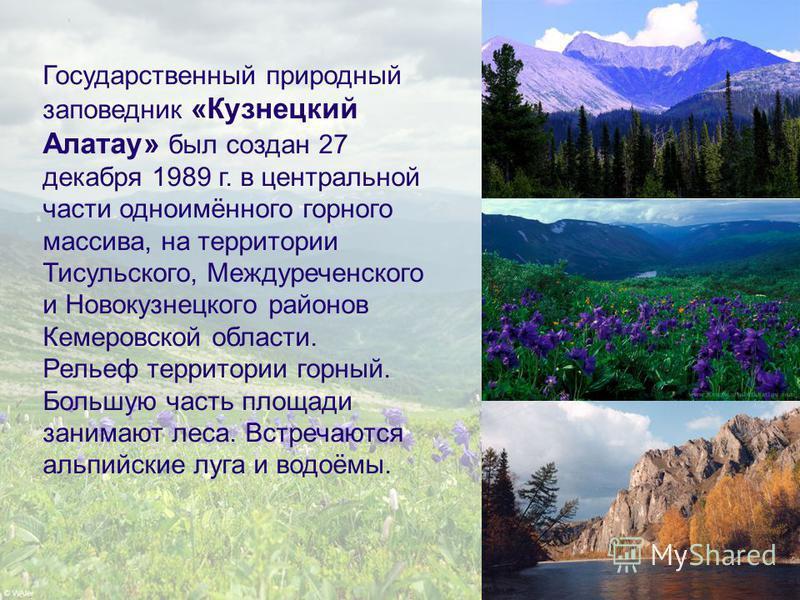 Государственный природный заповедник «Кузнецкий Алатау» был создан 27 декабря 1989 г. в центральной части одноимённого горного массива, на территории Тисульского, Междуреченского и Новокузнецкого районов Кемеровской области. Рельеф территории горный.