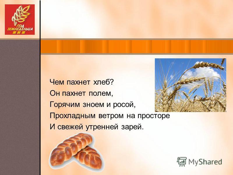 Чем пахнет хлеб? Он пахнет полем, Горячим зноем и росой, Прохладным ветром на просторе И свежей утренней зарей.