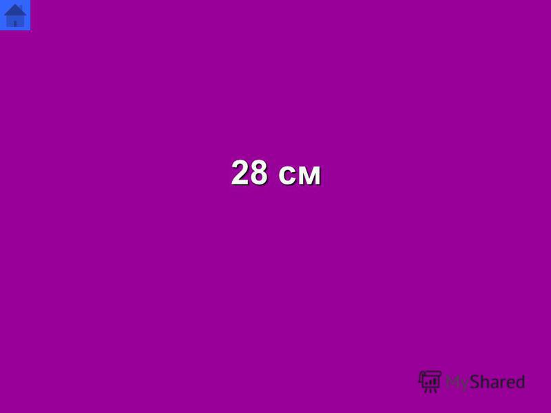 28 см
