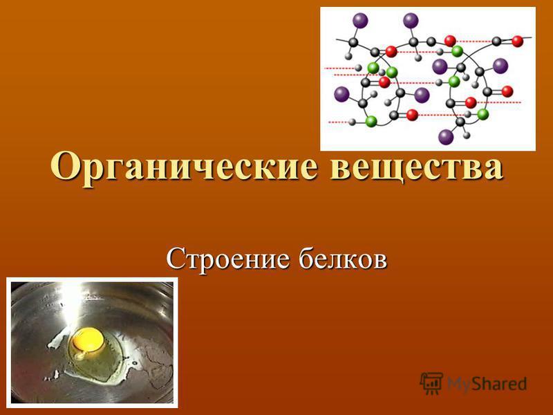 Органические вещества Строение белков
