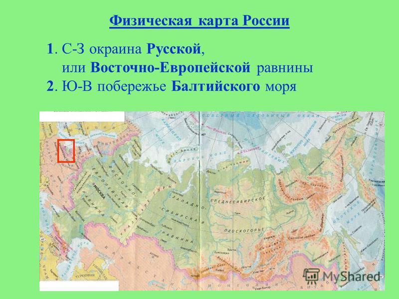 Физическая карта России 1. С-З окраина Русской, или Восточно-Европейской равнины 2. Ю-В побережье Балтийского моря