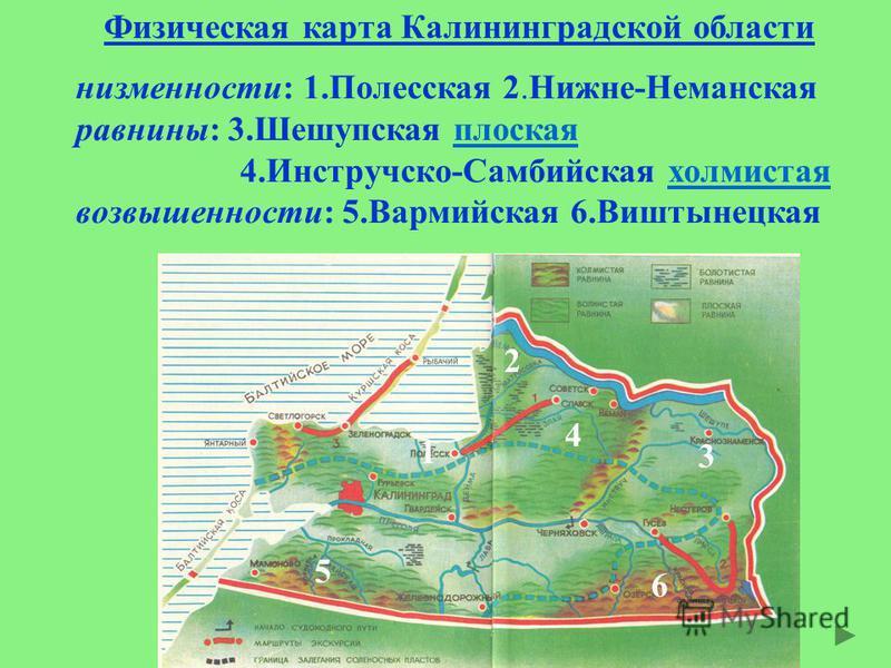 Физическая карта Калининградской области низменности: 1. Полесская 2.Нижне-Неманская равнины: 3. Шешупская плоская 4.Инстручско-Самбийская холмистая возвышенности: 5. Вармийская 6. Виштынецкая 1 2 3 4 5 6