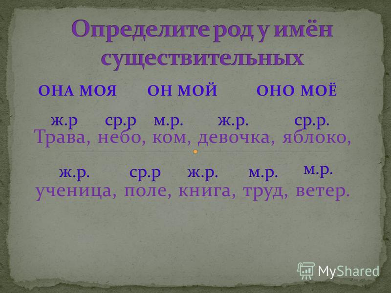 ОНА МОЯ ОН МОЙ ОНО МОЁ Трава, небо, ком, девочка, яблоко, ученица, поле, книга, труд, ветер.
