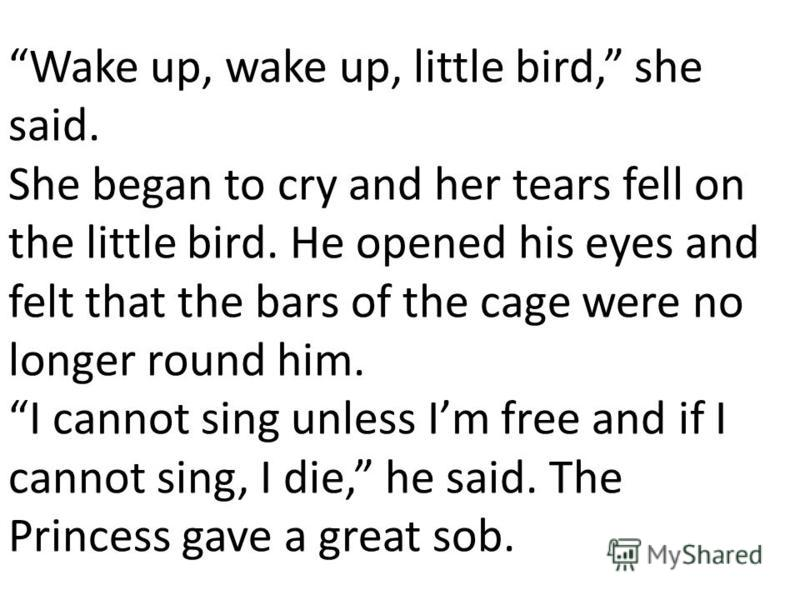 Wake up, wake up, little bird, she said. She began to cry and her tears fell on the little bird. He opened his eyes and felt that the bars of the cage were no longer round him. I cannot sing unless Im free and if I cannot sing, I die, he said. The Pr