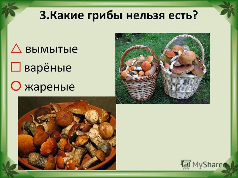 3. Какие грибы нельзя есть? вымытые варёные жареные