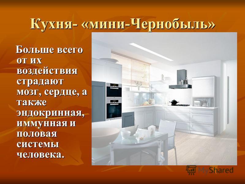 Кухня- «мини-Чернобыль» Больше всего от их воздействия страдают мозг, сердце, а также эндокринная, иммунная и половая системы человека. Больше всего от их воздействия страдают мозг, сердце, а также эндокринная, иммунная и половая системы человека.