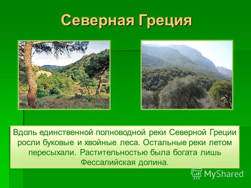 Вдоль единственной полноводной реки Северной Греции росли буковые и хвойные леса. Остальные реки летом пересыхали. Растительностью была богата лишь Фессалийская долина. Северная Греция