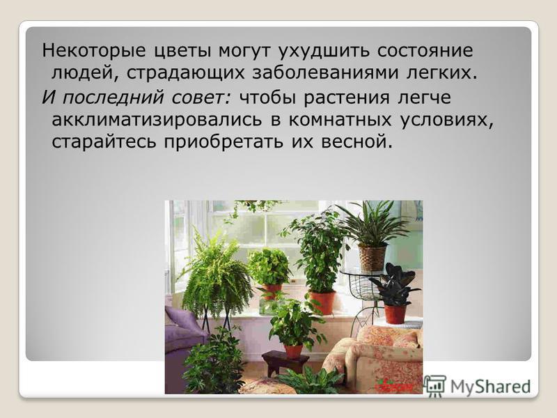 Некоторые цветы могут ухудшить состояние людей, страдающих заболеваниями легких. И последний совет: чтобы растения легче акклиматизировались в комнатных условиях, старайтесь приобретать их весной.