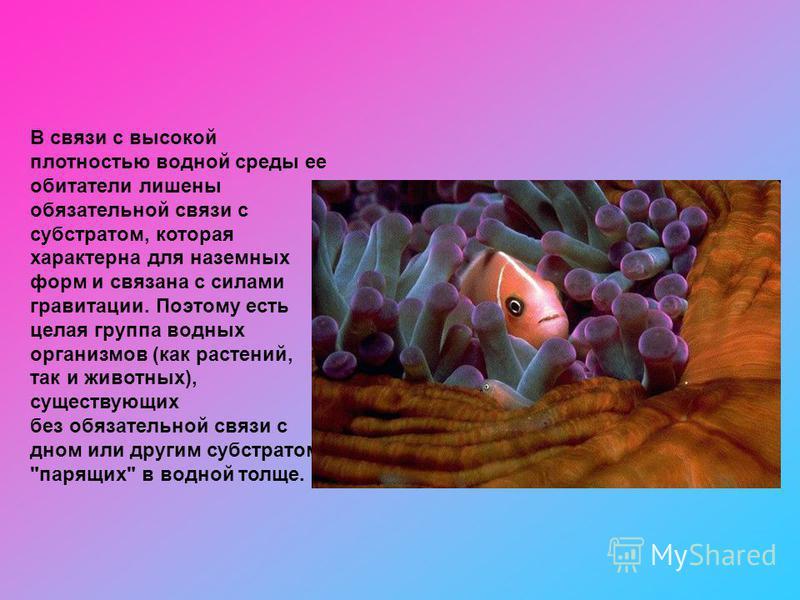 В связи с высокой плотностью водной среды ее обитатели лишены обязательной связи с субстратом, которая характерна для наземных форм и связана с силами гравитации. Поэтому есть целая группа водных организмов (как растений, так и животных), существующи