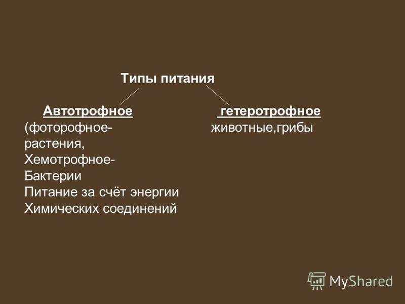 Типы питания Автотрофное гетеротрофное (фототрофное- животные,грибы растения, Хемотрофное- Бактерии Питание за счёт энергии Химических соединений