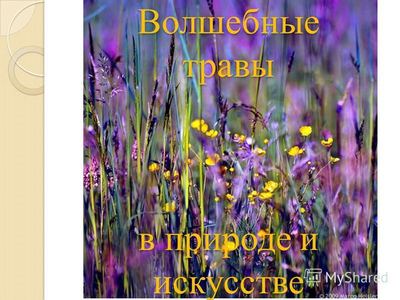 Волшебные травы в природе и искусстве