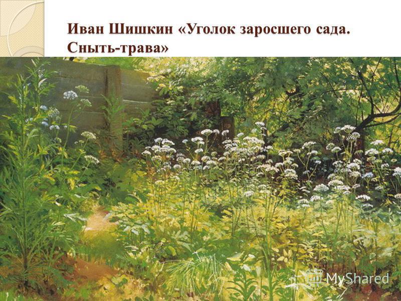 Иван Шишкин «Уголок заросшего сада. Сныть-трава» Иван Шишкин «Уголок заросшего сада. Сныть-трава»