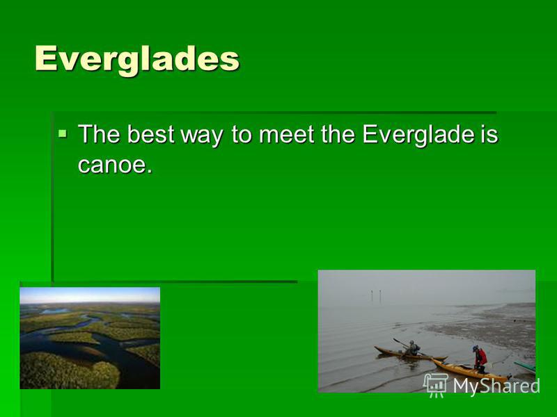 Everglades The best way to meet the Everglade is canoe. The best way to meet the Everglade is canoe.