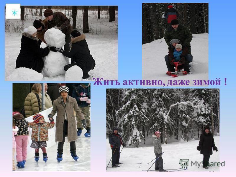 Жить активно, даже зимой !