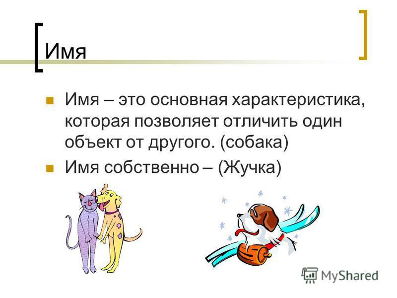 Имя Имя – это основная характеристика, которая позволяет отличить один объект от другого. (собака) Имя собственно – (Жучка)