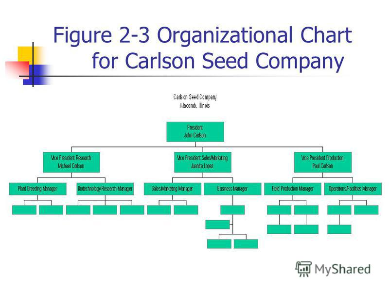 Figure 2-3 Organizational Chart for Carlson Seed Company