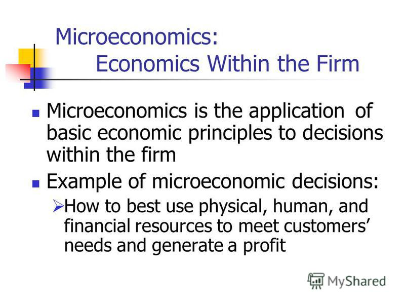 Microeconomics: Economics Within the Firm Microeconomics is the application of basic economic principles to decisions within the firm Example of microeconomic decisions: How to best use physical, human, and financial resources to meet customers needs