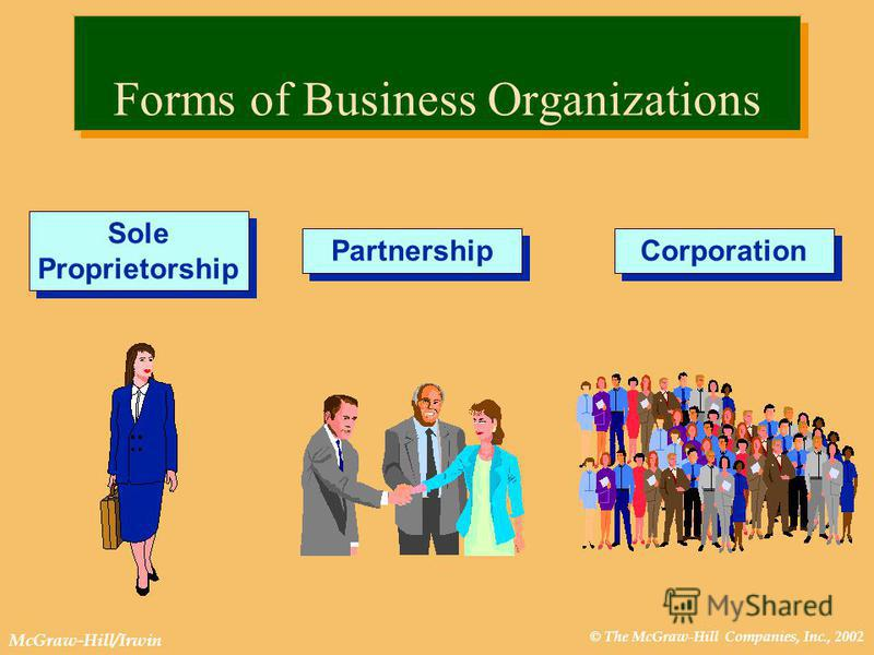 © The McGraw-Hill Companies, Inc., 2002 McGraw-Hill/Irwin Forms of Business Organizations Sole Proprietorship Partnership Corporation