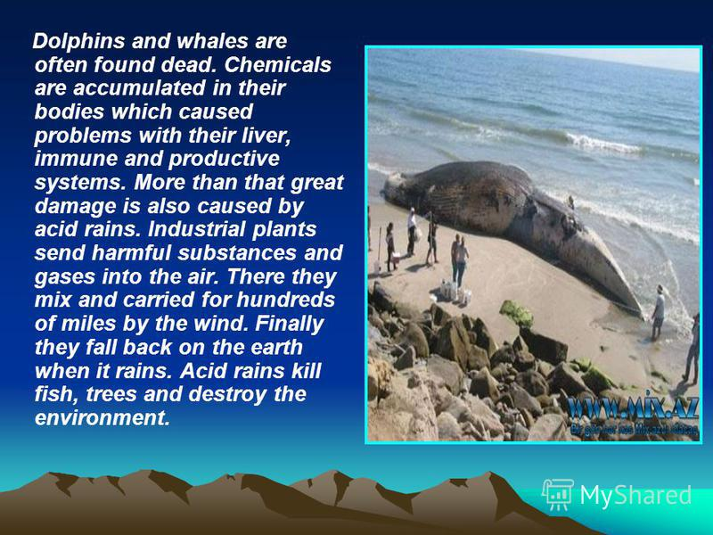 Dolphins and whales are often found dead. Chemicals are accumulated in their bodies which caused problems with their liver, immune and productive systems. More than that great damage is also caused by acid rains. Industrial plants send harmful substa