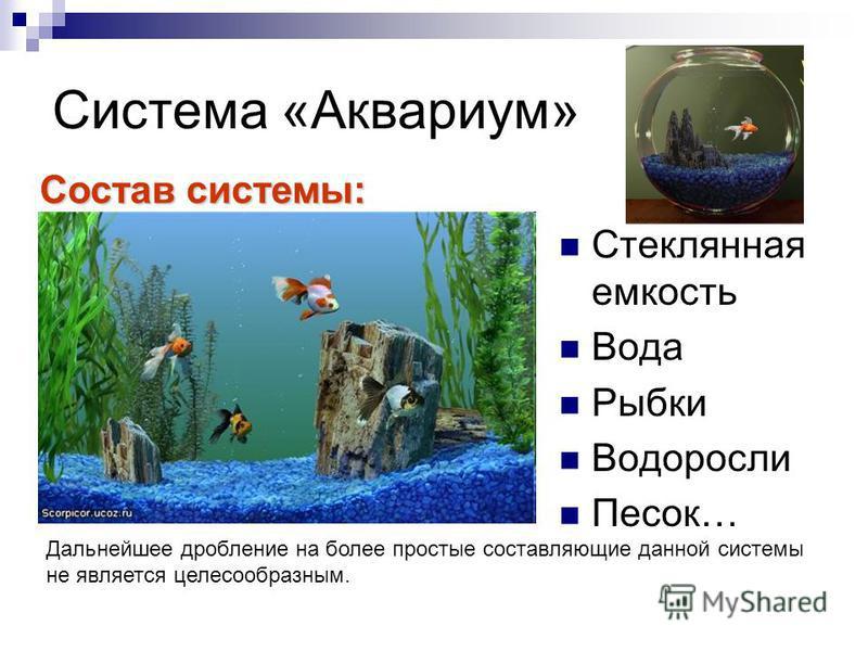 Система «Аквариум» Стеклянная емкость Вода Рыбки Водоросли Песок… Состав системы: Дальнейшее дробление на более простые составляющие данной системы не является целесообразным.