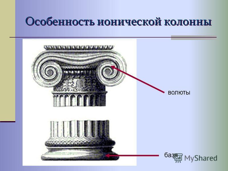 Особенность ионической колонны волюты база