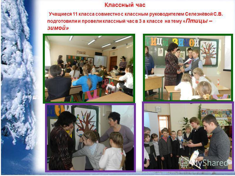 Классный час Учащиеся 11 класса совместно с классным руководителем Селезнёвой С.В. подготовили и провели классный час в 3 а классе на тему « Птицы – зимой»