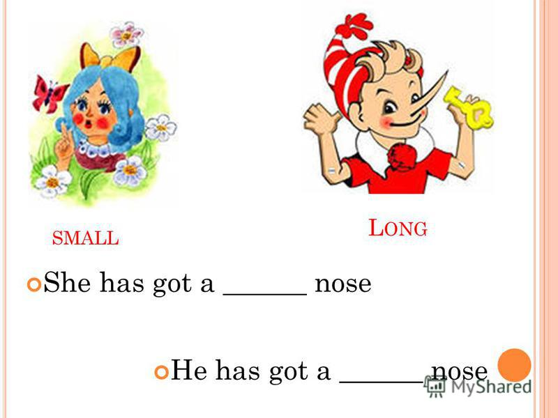 SMALL L ONG He has got a ______ nose She has got a ______ nose