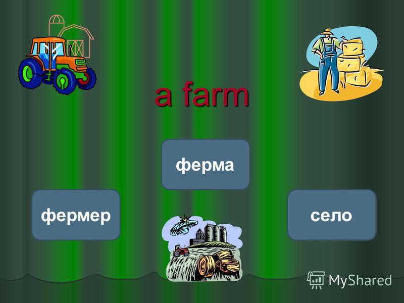 a farm ферма фермерсело