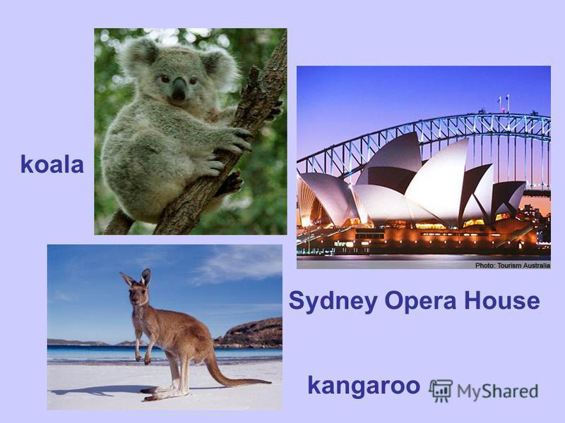 kangaroo Sydney Opera House koala