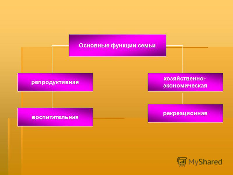 Основные функции семьи репродуктивная хозяйственно- экономическая рекреационная воспитательная